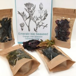 Organic Seaweed Mix,  Dulse, Sweet kelp, Sea Spaghetti, Irish Wakame, Carrageen moss